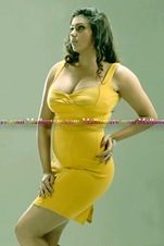 namitha-hot-photos-gallery18